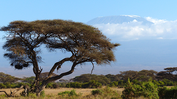 kilimanjaro_ 72